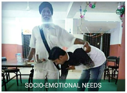 socio emotional needs